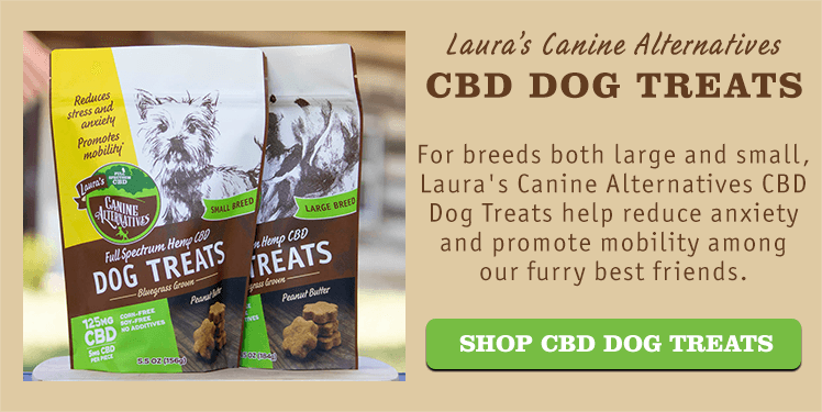 Laura's Canine Alternatives CBD Dog Treats for Small Breeds and Large Breeds